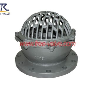 Stainless Steel Flanged Water Pump Bottom Foot Valve,Ductile Iron Foot Valve with stainless steel Screen