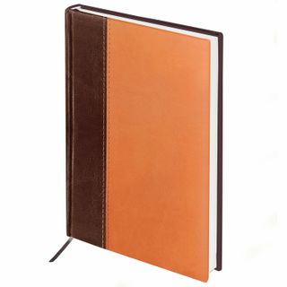 Diary of an undated A5 (138x213 mm) BRAUBERG