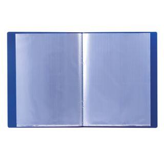 Folder 10 ear BRAUBERG standard, blue, 0.5 mm