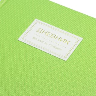 Diary 1-11 class 48 sheets, cover leather solid, stripe, BRAUBERG BRILLIANT, green