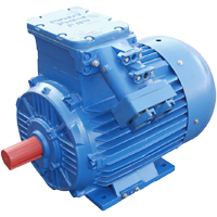 Low-voltage electric motor VA132M2