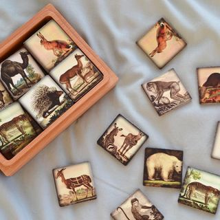 "Memori ""Zoo"" in a wooden box"