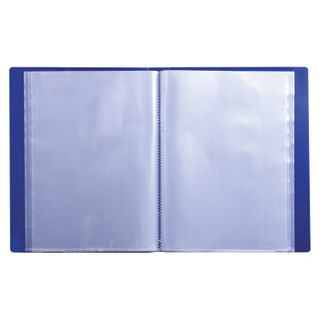 Folder 60 liners BRAUBERG standard, blue, 0.8 mm