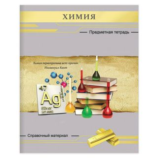 Notebook subject SILVER 48 sheets, textured embossment, CHEIC, cage, Prof.Press