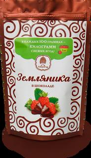 Strawberries in chocolate 100 g