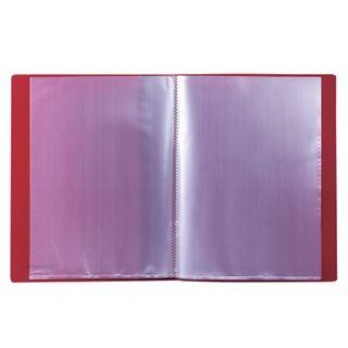 Folder 10 ear BRAUBERG standard, red, 0.5 mm