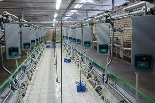 Milking halls