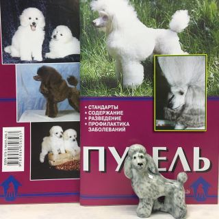 "Figurine porcelain ""Poodle grey"" with booklet"