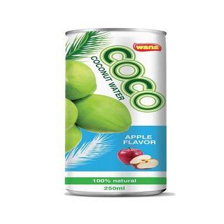 Wholesale Coconut Water Vietnam With Orange Flavor 250ml
