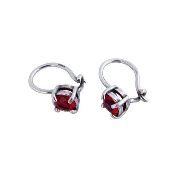 Earrings 30038
