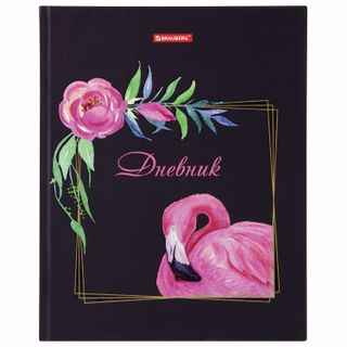 Diary 5-11 class 48 sheets, solid, BRAUBERG, selective varnish, with prompt,