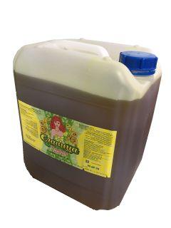 Food linseed oil 10l