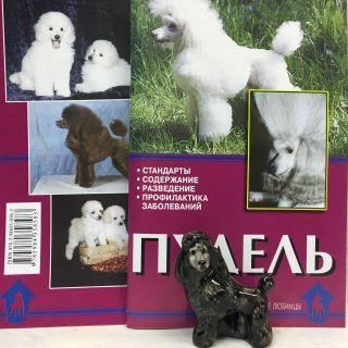 """Figurine porcelain """"Poodle black"""" with booklet"""