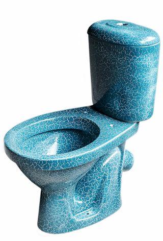 Sea-view compact toilet