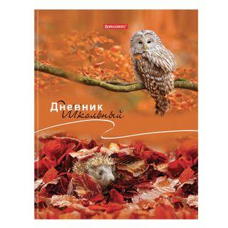 Diary 1-11 class, 40 sheets, solid, BRAUBERG, glossy lamination,
