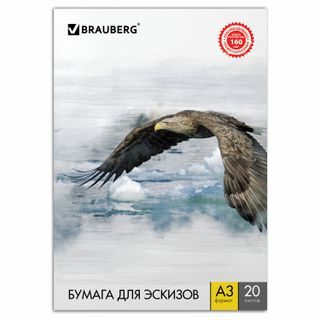 Big ARTA FORMAT A3, 20 sheets, 160 g/m2, BRAUBERG, 297x420 mm, Eagle