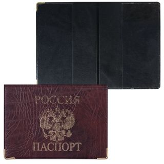 Passport cover horizontal with the arms, PVC under the skin, print, gold, brown