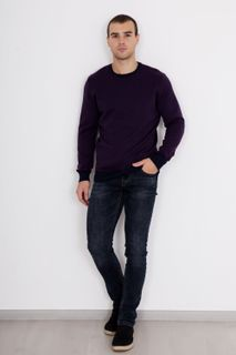 Jumper Eugene B Art. 5514