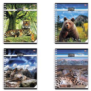 Notebook A5, 96 sheets, HATBER VK, spiral, cage, cover cardboard,