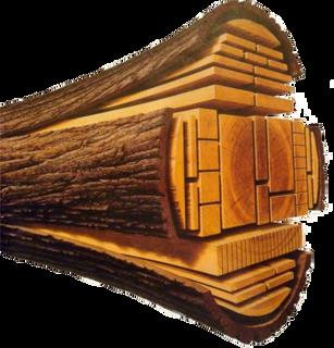 Saw-timbers