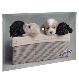 Folder-envelope with button INLANDIA Puppies, A4, 160 micron, 100 sheets color printing