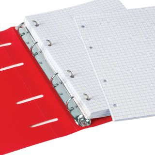 Notebook on A5 rings (160 x215 mm), 80 sheets, plastic cover, cage, BRAUBERG,