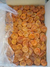 Apricot 'Lemon'