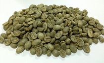 Сoffee Typica S18