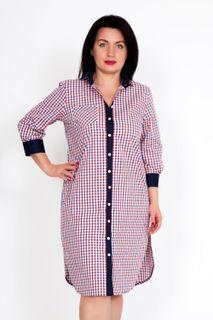 Shirt-dress Beatriss Art. 4132