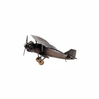 Fighter model ANT-5 1:72