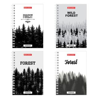 Small FORMAT Notebook (115 x150 mm) A6, 80 sheets, comb, hard cardboard, cage, BRAUBERG,