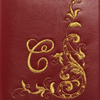 """Passport cover """"Charm"""" Initial"""