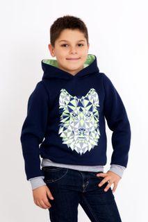 Sweatshirt Vilen Art. 2691