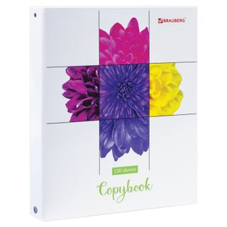 Notebook on A5 rings (175x215 mm), 120 sheets, cardboard cover, cage, glossy lamination, BRAUBERG,