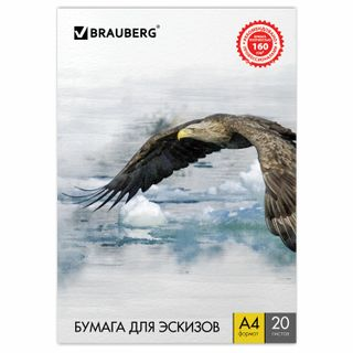 A4 drawing folder, 20 sheets, 160 g/m2, BRAUBERG, 210 x297 mm,