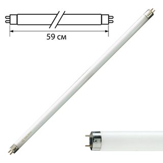 PHILIPS / Fluorescent lamp TL-D 18W / 33-640, 18 W, cap G13, in the form of a tube 59 cm