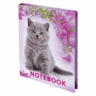 Small FORMAT Notebook (110 x147 mm) A6, 80 sheets, hardcover, cage, selective varnish, BRAUBERG,