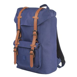 BRAUBERG youth backpack with branch for the laptop,