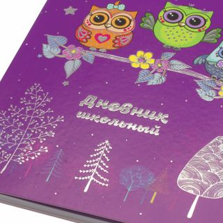 Diary 1-4 class 48 sheets, cover leather (light), foil, UNLANDIA,