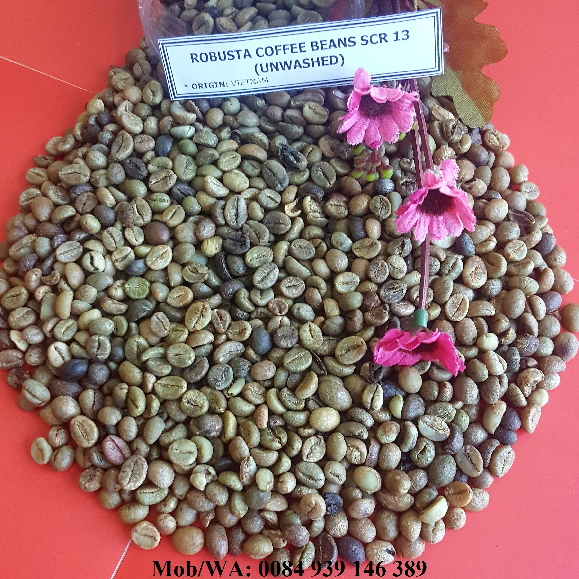 UNWASHED ROBUSTA COFFEE BEANS SCR 13 - HIGH QUALITY - GOOD PRICE89