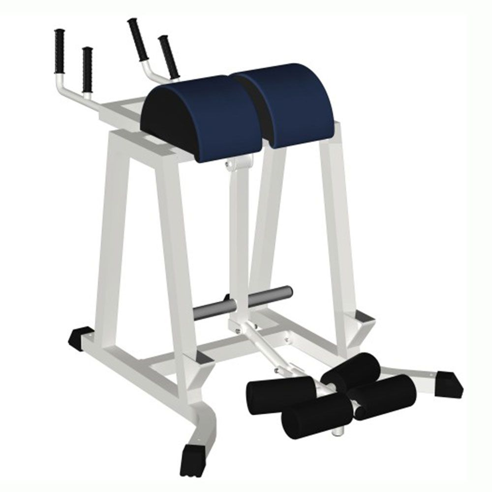 MB Barbell / Reverse hyperextension (free weights).
