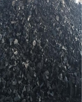 Charcoal birch